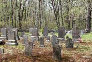 Cemetery 48